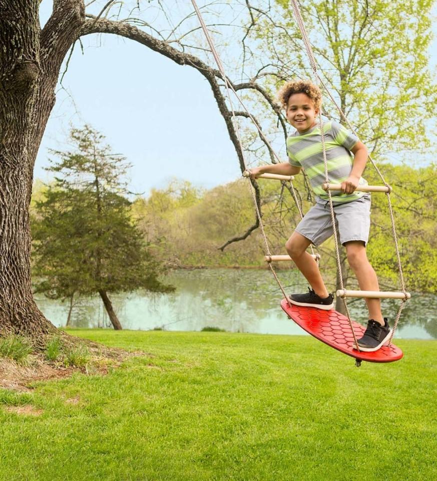 Air Rider Surf Swing