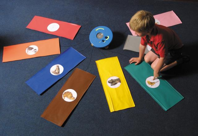 Floor Pad Pressure Toy