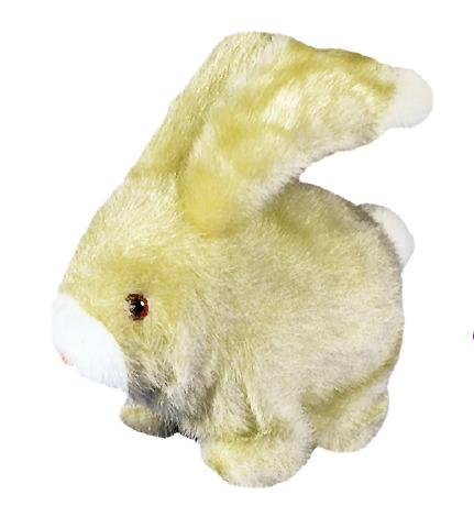 Fluff the Rabbit Reward