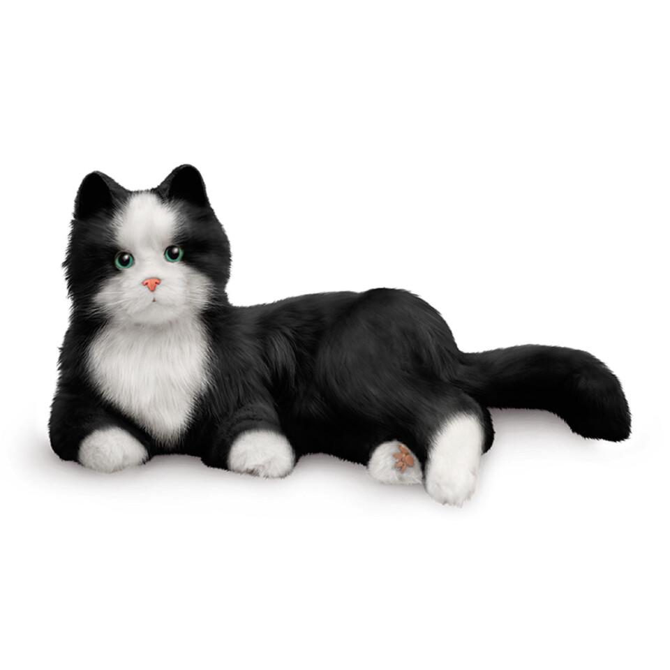 Svart-Vit Kompis katt - digitalt terapidjur
