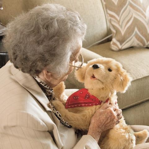 Companion Dog Cuddly Toy