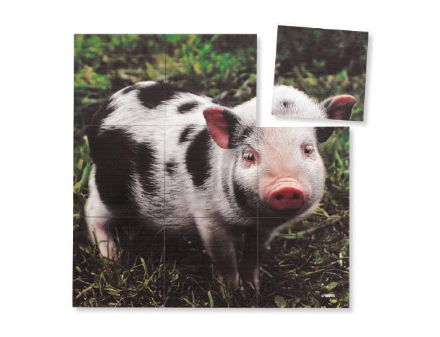 Magna Square Puzzles-Pig