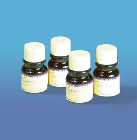 Aroma Therapy Oil Starter Kit