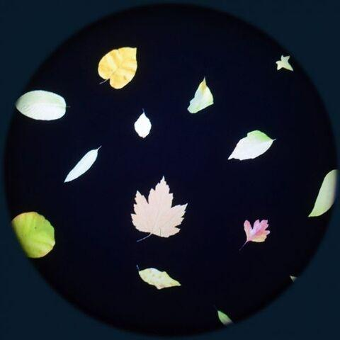Projector Effects Wheel,  Little Leaves
