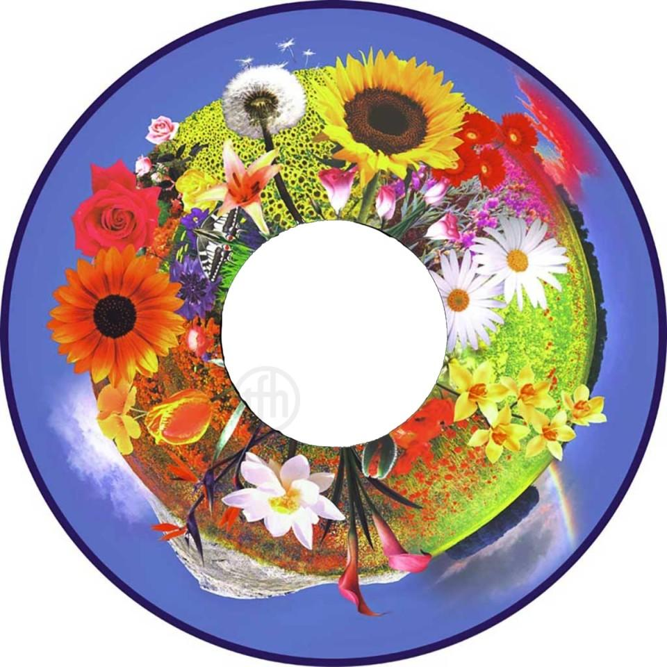 Projector Effects Wheel, Grandmas Flower Garden