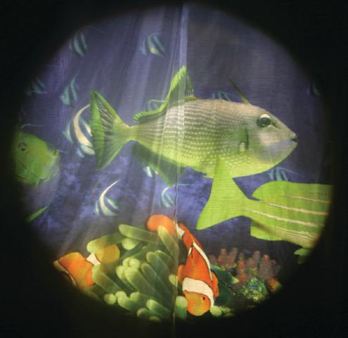 Projector Effects Wheel, Tropical Fish