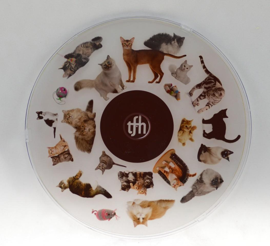6 Inch Projector Wheel - Cats Scene