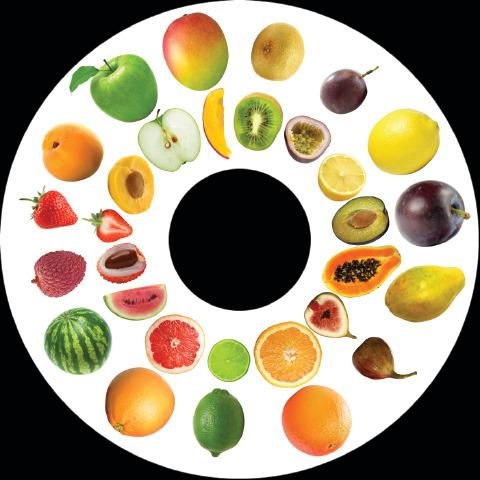 6 Inch Projector Wheel - Fruit Scene