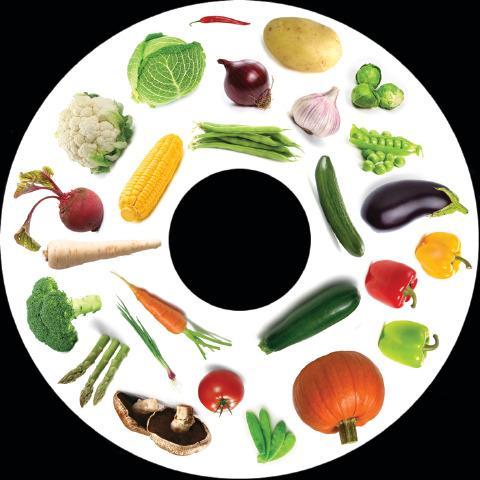 6 Inch Projector Wheel - Vegetables Scene