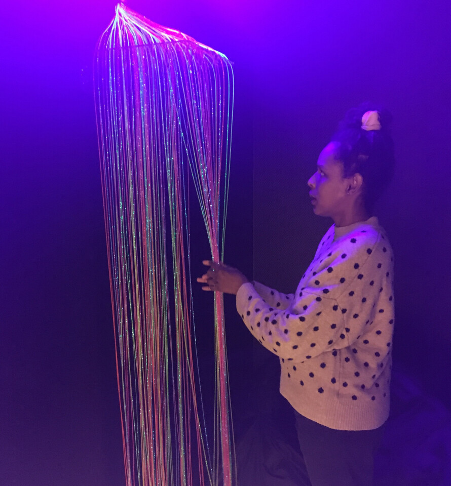 Fiber Optic Curtain