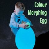Colour Morphing Egg