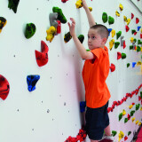 Adaptive Climbing Wall - 20'