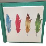 Feather Image Colour Controller