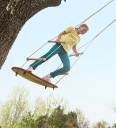 Air Rider Surf Swing