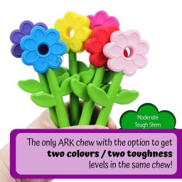 Ark Flower Wand Chewy