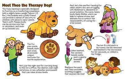 Theo the Therapy Dog