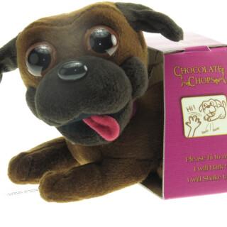Chocolate Chops Dog