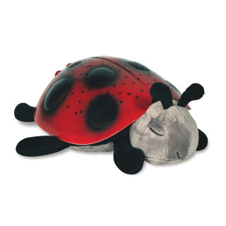 Star Ladybug - Illumination Sensory Toy