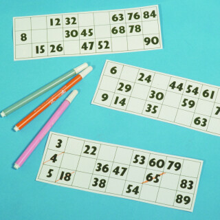Large Print Bingo Cards - Games Special Needs Toy