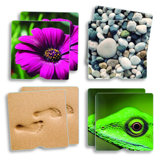 Tactile Memory Game - Nature Objects