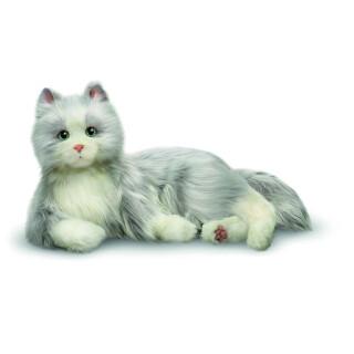 Silvergrå kompis katt - digitalt terapidjur