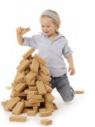 Cork Building Blocks Natural