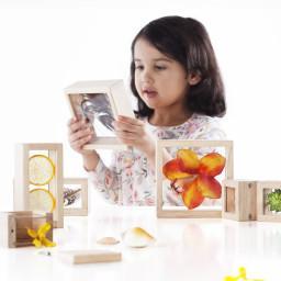 Treasure Blocks - Clear Learning Tool