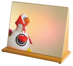 Unbreakable Mirror - Self Awareness Special Needs Toy