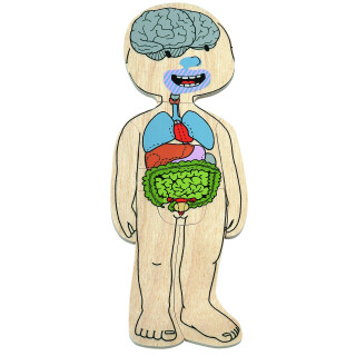 Your Body - Girl - Anatomical Learning Puzzle