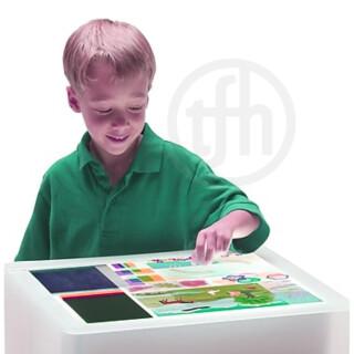 First Look  Giant STEM Light Table Kit