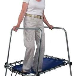 Unstable Gait Trainer