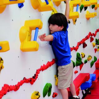 Adaptive Climbing Wall - 12'