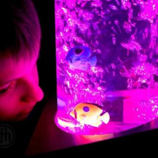 Aquarium Bubble Columns