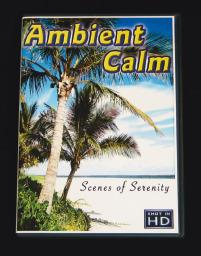 Ambient Calm DVD - Listening Sensory Toy