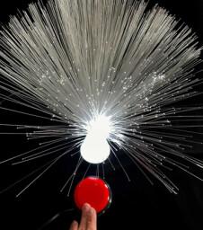 Fiber Optic Light Reward