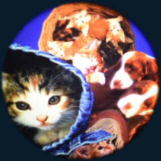 Projector Effects Wheel, Soft Fluffy Pets