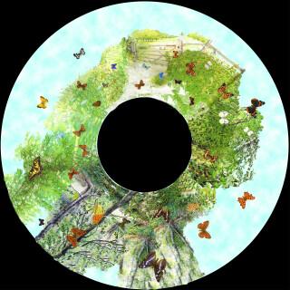 Solar Projector Effects Wheels- Style: British Butterflies