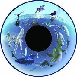 Projector Effects Wheel, Dolphins and Whales