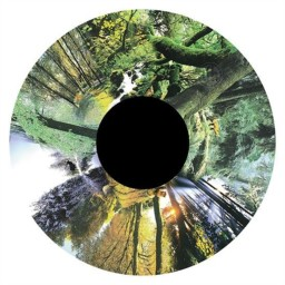 Effects Wheel, Seasonal Forest