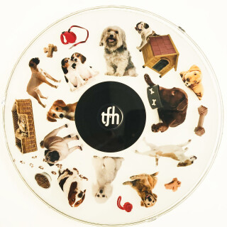 SNAP Projector Wheel - Dogs