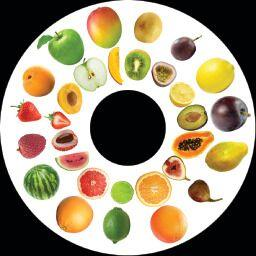 SNAP Projector Wheels- Style: Fruit
