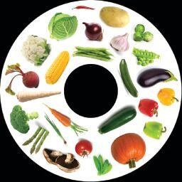 SNAP Projector Wheels- Style: Vegetables