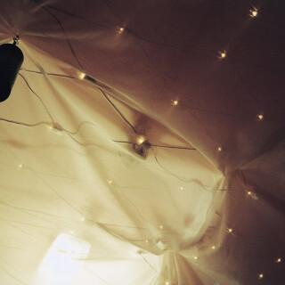 Ljusnät LED