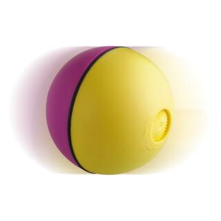 Wacky Motorised Ball