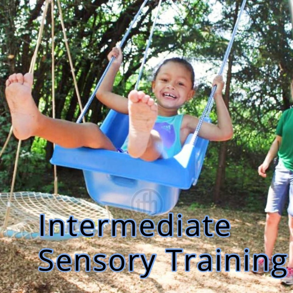Introduction To Sensory Principles and Applications